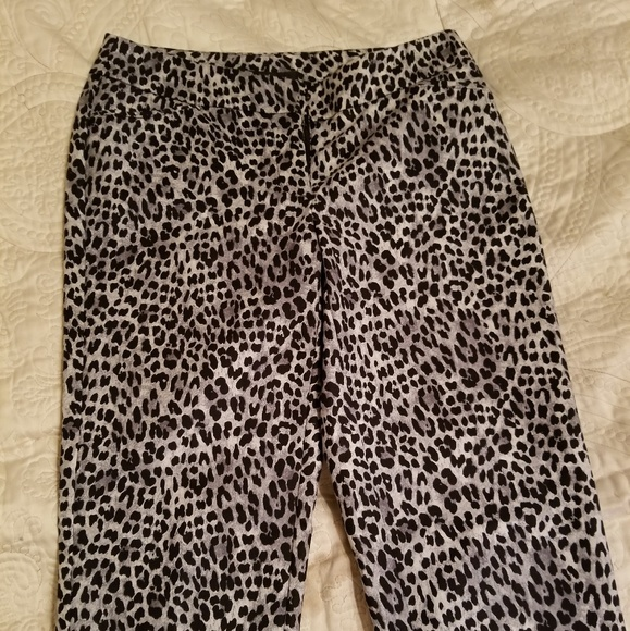 140e5bbf2bb0 White House Black Market Pants | Bnwt Whbm Leopard Print | Poshmark